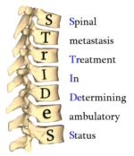 STrIDeS Logo